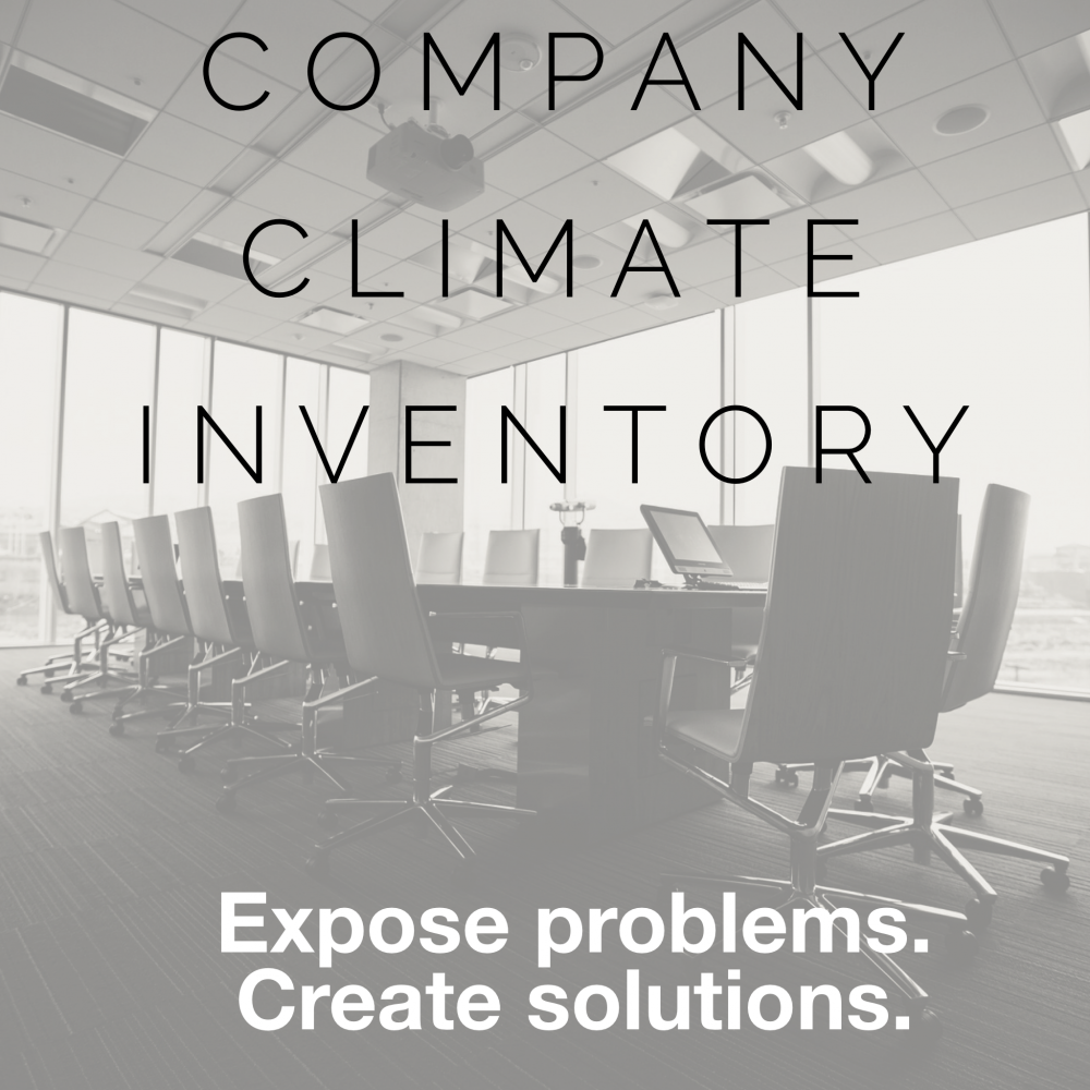 Company Climate Inventory_final