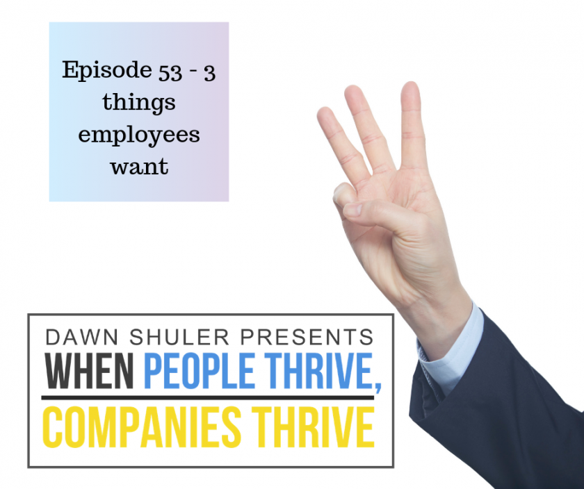 Episode 53 – 3 Things Employees Want