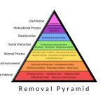 What is the Removal and Replacement System and why do we care?